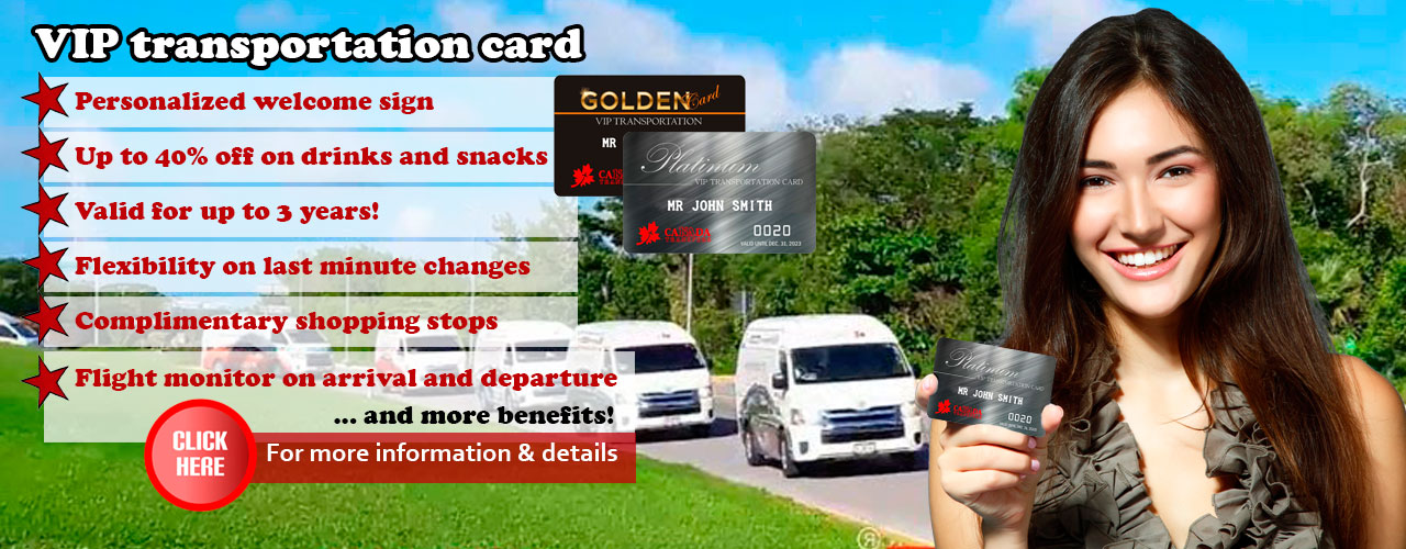 Order VIP transportation card